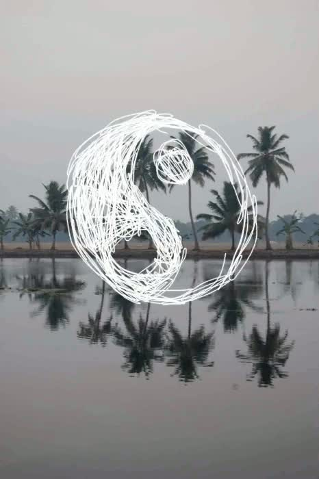 Watch and share Palm Trees GIFs and Ying Yang GIFs on Gfycat
