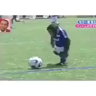 Watch funny monkey playing football GIF on Gfycat. Discover more related GIFs on Gfycat