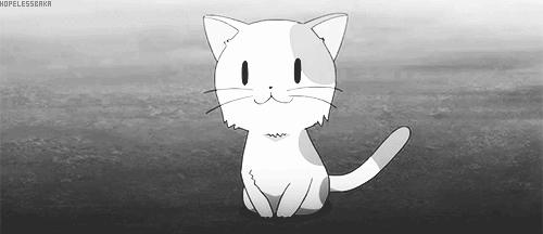 adorable, anime, anime animal, anime cat, anime kawaii, anime kitten, anime life, anime lover, cat, dream, girl, japan, japan kawaii, japan lover, japanese, kawaii, kitten, love, meow, teen, meow:) GIFs