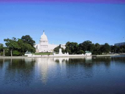 Watch washington GIF on Gfycat. Discover more related GIFs on Gfycat