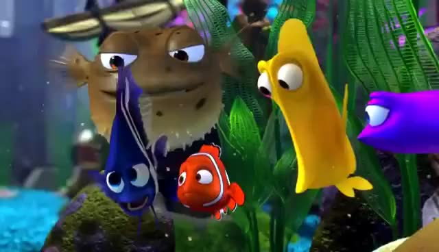 Watch and share Finding Nemo GIFs on Gfycat