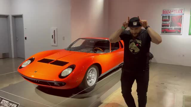 Watch and share Petersen Museum GIFs and Animals GIFs on Gfycat