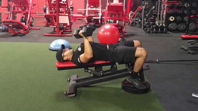Watch Decline db bench press GIF by Gymapp (@hardcoregym) on Gfycat. Discover more related GIFs on Gfycat