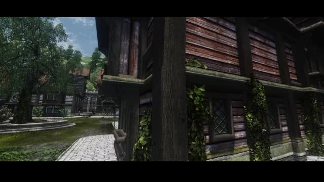 Watch and share The Elder Scrolls GIFs and Beautiful GIFs on Gfycat