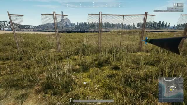 Watch and share Pubg GIFs and Bug GIFs by Shoro on Gfycat