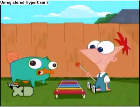 Watch Baby perry the platypus GIF on Gfycat. Discover more Baby, perry, platypus, the GIFs on Gfycat