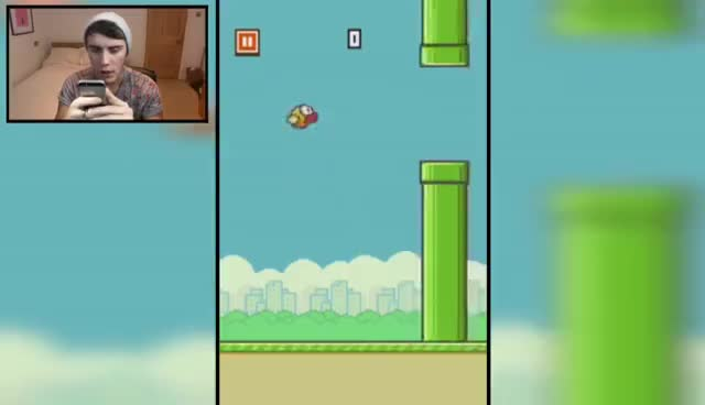 flappy bird, hate, alfie hates flappy bird GIFs