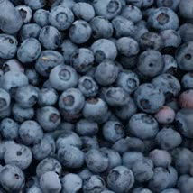 Watch and share Blueberries GIFs on Gfycat