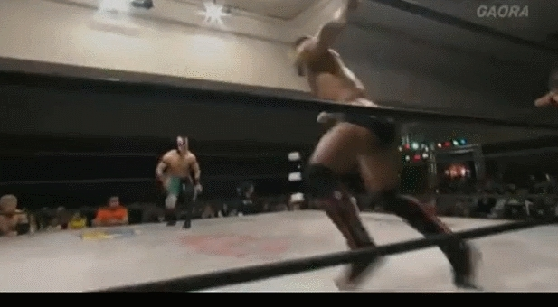nostupidquestions, squaredcircle, Ricochet and Flamita doing Ricochet and Flamita things GIFs