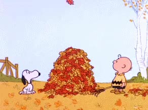 Watch and share Pile Of Leaves GIFs and Seasons Change GIFs by Reactions on Gfycat