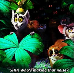 Watch and share 🇲🇬 — Madagascar GIFs on Gfycat