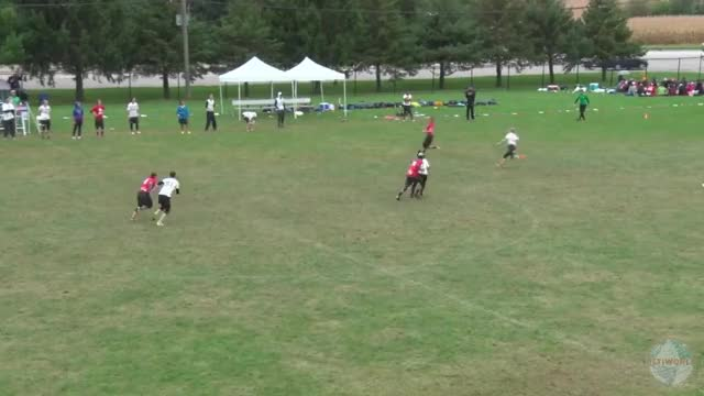 Watch and share Ultimate GIFs and Frisbee GIFs by push_pass on Gfycat
