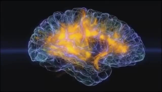 Watch and share Brainwave Example GIFs on Gfycat