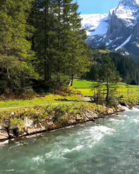 Watch and share Canton Of Bern GIFs on Gfycat