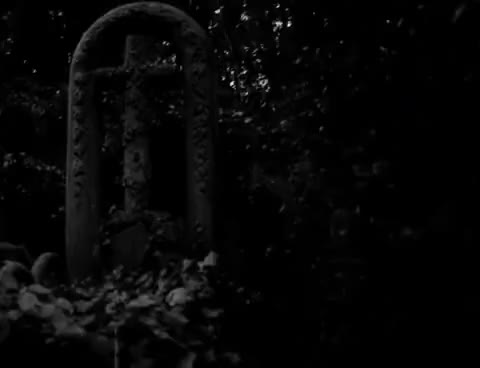 Watch and share Cemetery GIFs on Gfycat