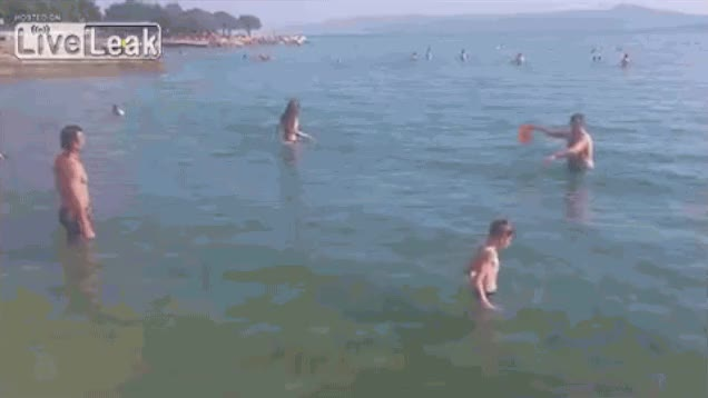 Watch and share Frisbee GIFs on Gfycat