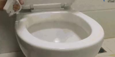Watch and share Toilet1 GIFs on Gfycat