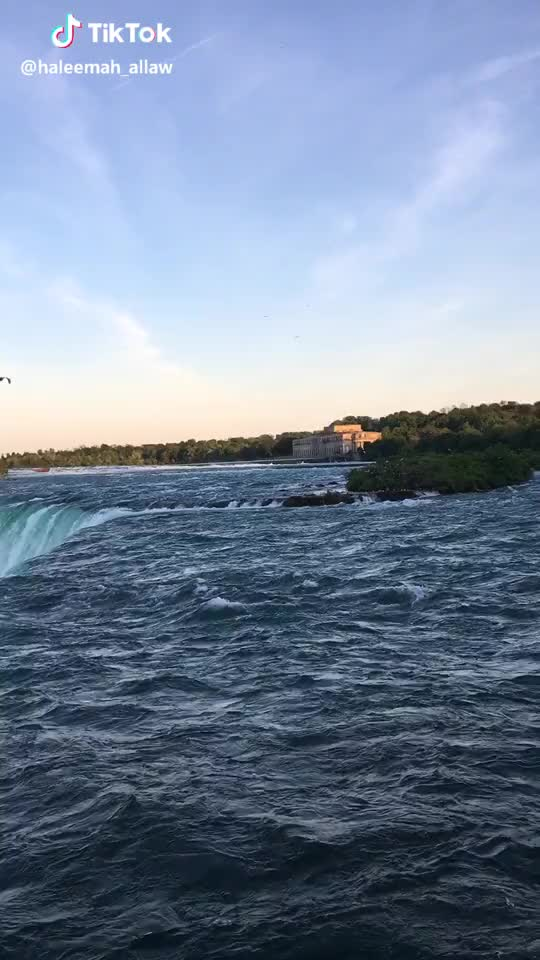 Watch and share Naturelove GIFs and Canada GIFs by bravebroccoli on Gfycat