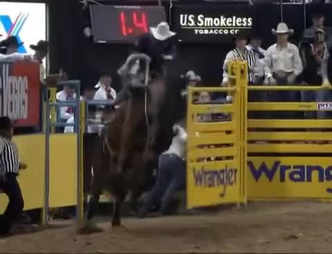 Watch and share Highlights Of 05 NFR Saddle Bronc Riding GIFs on Gfycat