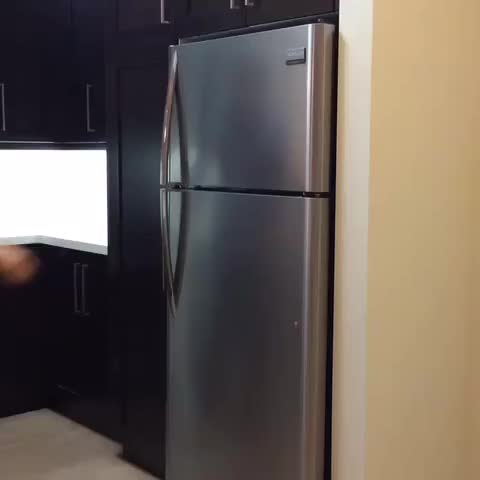 Watch this in the fridge GIF by danbaker on Gfycat. Discover more related GIFs on Gfycat