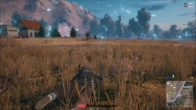 Watch and share Chicken Dinner GIFs by babyt08 on Gfycat