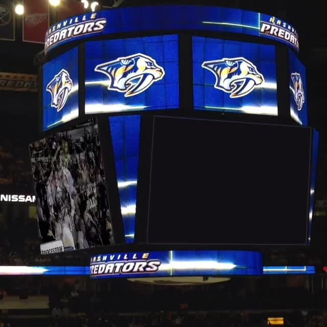 Watch and share Nashville GIFs and Predators GIFs by c0ld-- on Gfycat