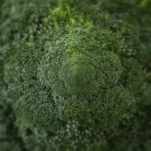 Watch and share Infinite Broccoli GIFs on Gfycat