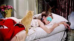 Watch Breakfast at Tiffany's (USA, 1961) GIF on Gfycat. Discover more Audrey Hepburn, Breakfast at Tiffany's, George Peppard, Truman Capote, movie gifs, my gifs GIFs on Gfycat