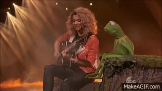 Tori Kelly - Rainbow Connection (Ft. Kermit The Frog) (The Wonderfu World of Disney Disneyland) GIFs