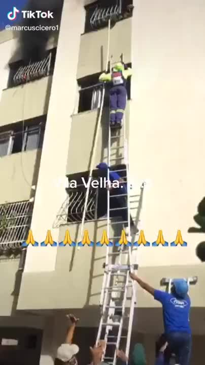 Watch and share Ripsave - Dog Jumps Off Of Burning Building In Brazil GIFs by marshal on Gfycat