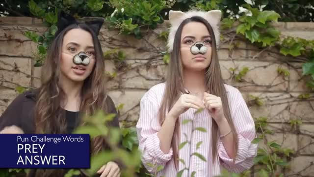Watch The Pun Challenge!? - Merrell Twins GIF on Gfycat. Discover more All Tags, Pun, Twins, challenge, comedy, fails, funny, punny, puns, ryan, sisters, sketch, twin, vanessa, veronica GIFs on Gfycat