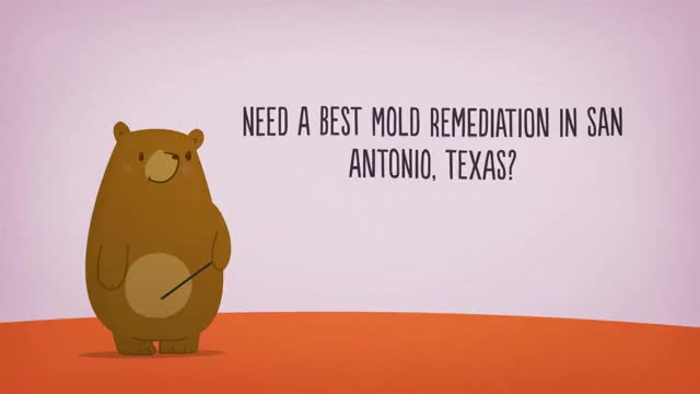 Watch and share All US Mold Remediation In San Antonio, Texas GIFs by Mold Removal in San Antonio TX on Gfycat