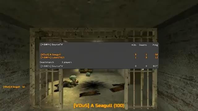 Seagull HL2DM HD