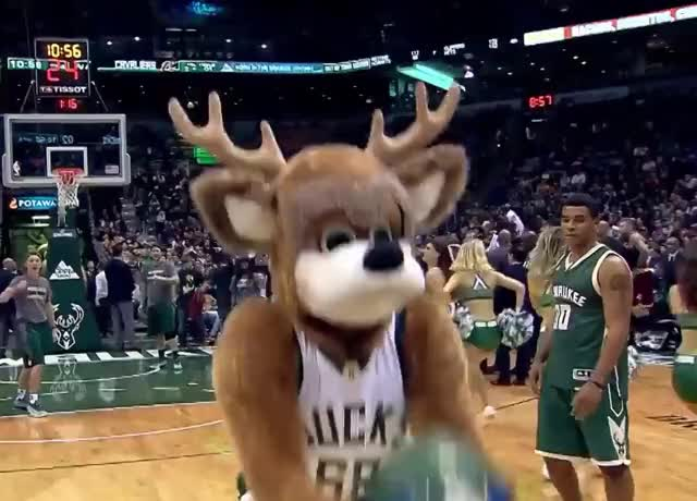 Watch this trending GIF by GIF Queen (@ioanna) on Gfycat. Discover more GIF Brewery, ball, bango, basket, basketball, bucks, celebrate, funny, mascot, nba, party, victory, win, won GIFs on Gfycat