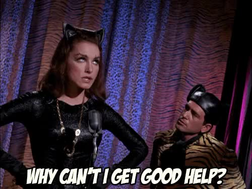 Watch this catwoman GIF on Gfycat. Discover more 1966 batman, batman, batman gif, catwoman, catwoman gif, gameraboy gif, gif, julie newmar, my gi, pinup, selina kyle, television, vintage, vintage television, why can't I get good help, why can't i get good help GIFs on Gfycat