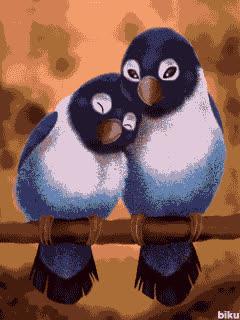 birds in love | Pets & Animals gif 240x320 (02) | fanfan.screensavers GIFs