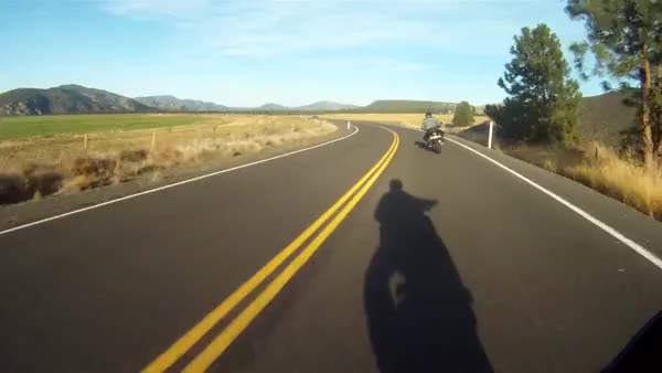 Watch and share Motorcycles GIFs by ridethepiggy on Gfycat