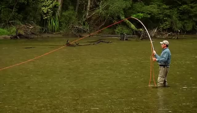 Watch and share Flycasting GIFs and Flyfishing GIFs on Gfycat