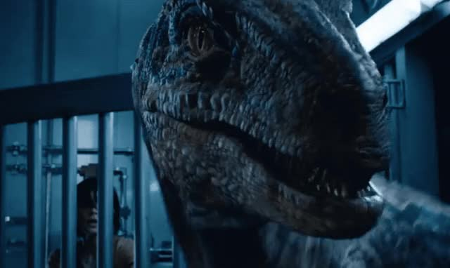 Watch this angry GIF by GIF Queen (@ioanna) on Gfycat. Discover more angry, annoyed, dino, dinosaur, disgust, ew, fallen, fight, furious, jurassic, kingdom, mad, movie, off, pissed, scary, show, teeth, trailer, world GIFs on Gfycat