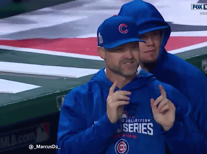 chicubs,  GIFs