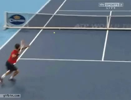 Watch and share Tenis GIFs on Gfycat