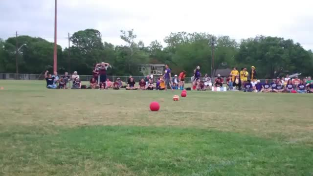 Watch and share Quidditch GIFs on Gfycat