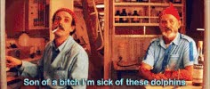 Watch Life Aquatic GIF on Gfycat. Discover more related GIFs on Gfycat
