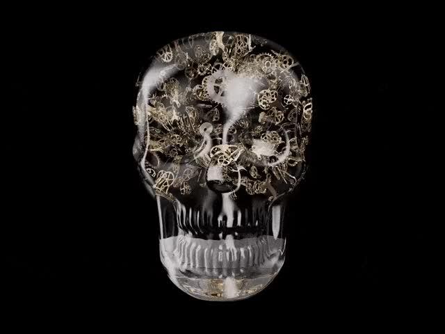 Watch and share Skull.min GIFs by berdvaye on Gfycat
