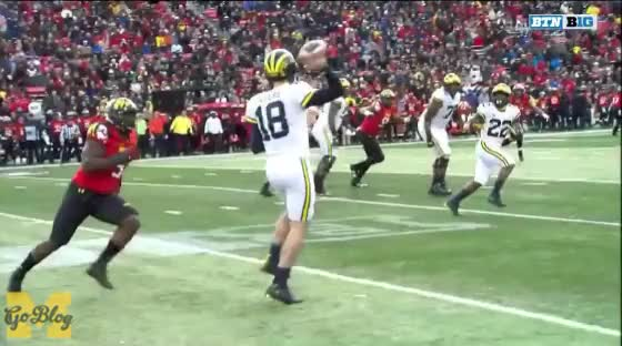 Watch and share Brandon Peters GIFs and Karan Higdon GIFs by MGoBlog on Gfycat