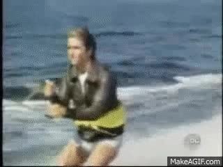 Watch and share Fonzie Shark GIFs on Gfycat