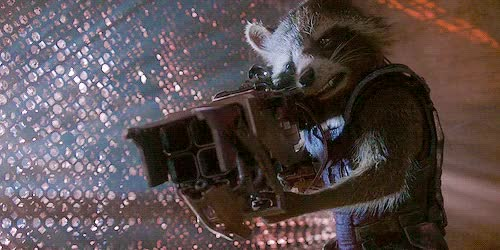 Watch this racoon GIF on Gfycat. Discover more related GIFs on Gfycat