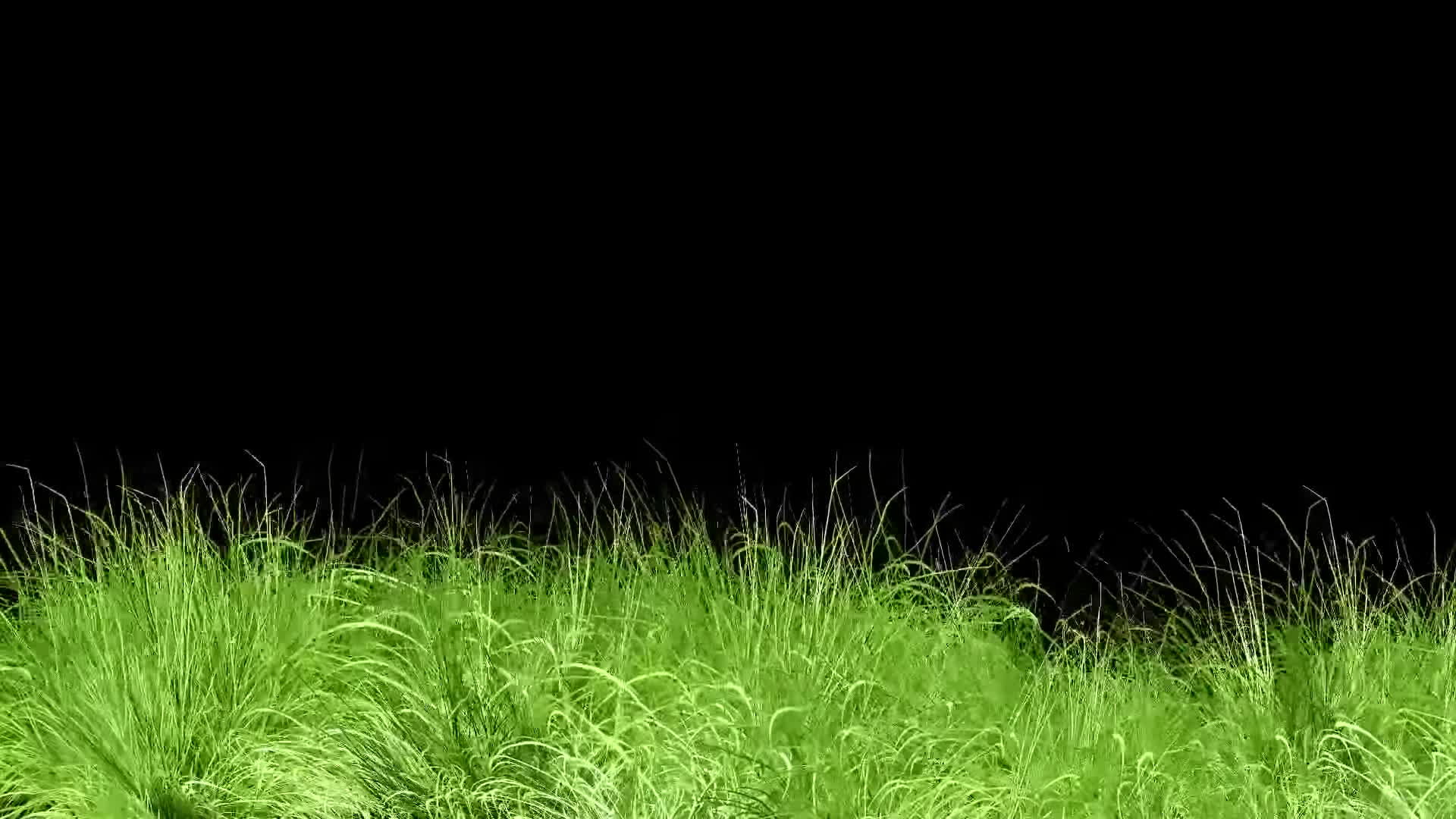 Animated Grass Motion Black Screen Background Gif By Colgate Smiile Gfycat