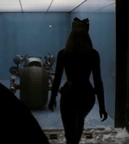 anne Hathaway was so banging hawt as Catwoman