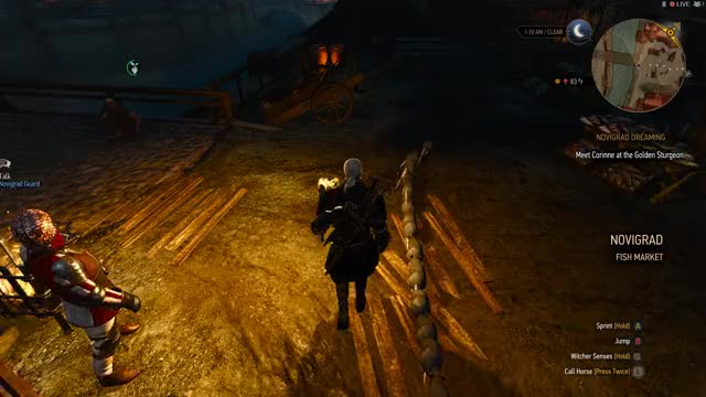 Watch and share Witcher 3 GIFs by Robospike on Gfycat